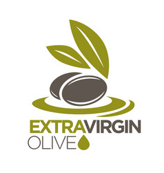 extra virgin olive oil logo design of vector image vector image
