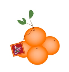 Mandarin orange and fortune card vector