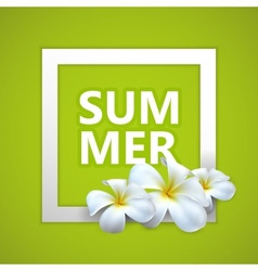 Summer label with exotic frangipani flowers vector