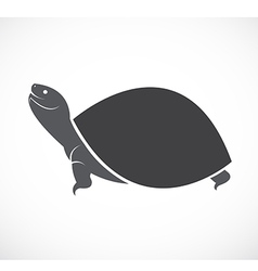 image of an turtle design vector image