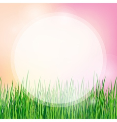 Summer background with green grass vector
