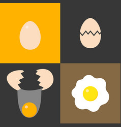 collection of eggs for cooking vector image