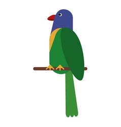 Parrot exotic bird nature vector
