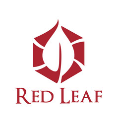 red leaf logo design vector image vector image