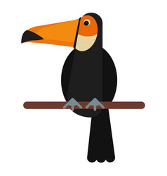 Toucan bird exotic fauna vector