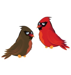 Cartoon couple of cardinals vector