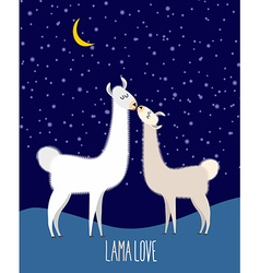 Llama Alpaca Two cute llama Kiss at night under vector image