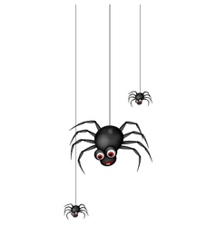 funny spider cartoon family vector image