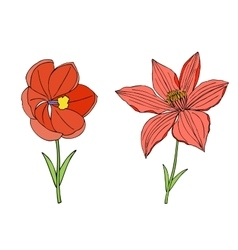 Doodles flowers collection vector