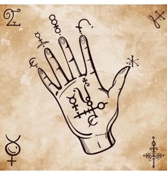 Vintage fortune teller hand with spell elements vector