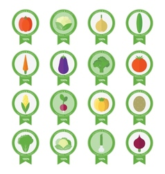 banners stickers with fresh vegetables vector image