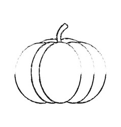 blurred silhouette pumpkin fruit food vector image