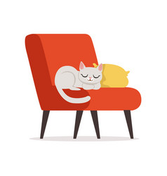 Lovely white cat sleeping on a pillow on a red vector