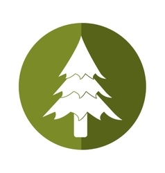 Pine tree forest camping icon button shadow vector