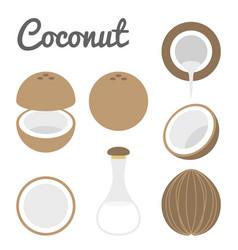 Coconut icon vector