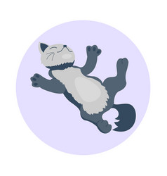 cat breed cute kitten gray pet portrait fluffy vector image