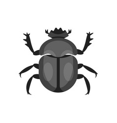 flat style of scarab beetle vector image