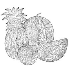 Hand drawn pineapple watermelon apple vector