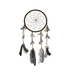 Naturalistic Dreamcatcher Isolated on White vector image
