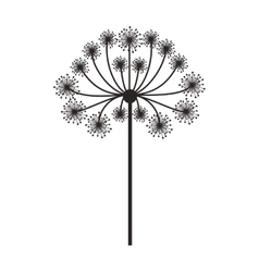 silhouette dandelion with stem and pistil vector image