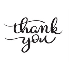 Hand drawn thank you text on white vector