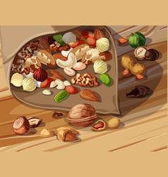 cartoon nuts template vector image