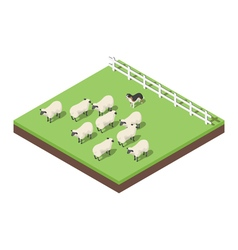 Isometric 3d of farm animals vector