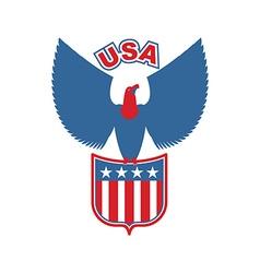 Usa eagle shield birds of prey in colors of vector