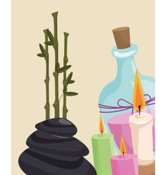 Spa therapy lotion aroma candle hot stone vector