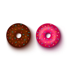 Pink and chocolate donuts vector