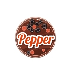 Pepper spice vector