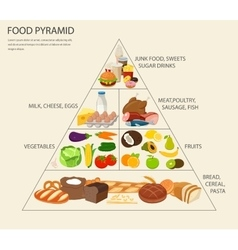 Food pyramid healthy eating infographic healthy vector