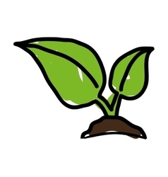 Leafs plant ground icon vector