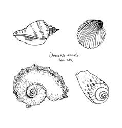 Set of hand drawn sea shells vector image vector image