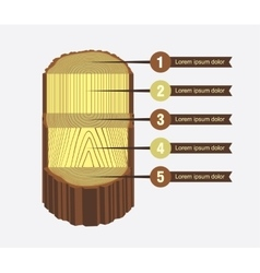 Tree Log Sawing Scheme vector image