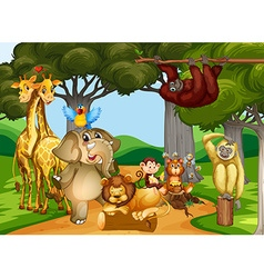 Wild animals living in the forest vector