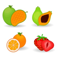 Delicious fruit set vector