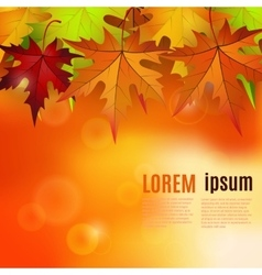 Autumn background with red and yellow leaves vector