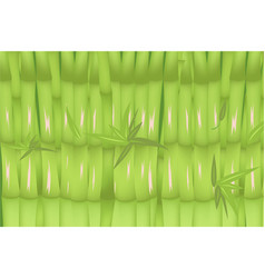bamboo forest green background design vector image vector image