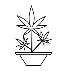 Hemp in pot icon outline style vector