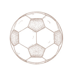 Soccer ball hand drawn sketch vector