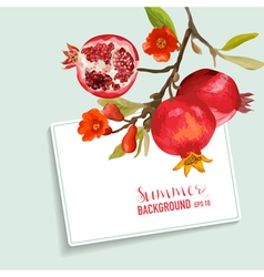 Pomegranates and flowers card fruit background vector