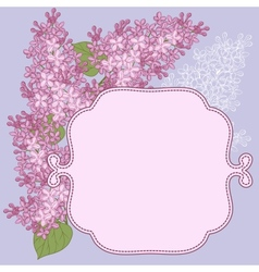 background for design with flowers of lilac vector image