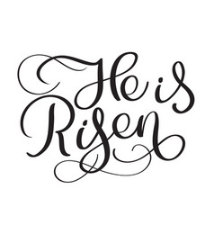 He is risen text on white background calligraphy vector