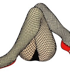 Fishnet stockings vector
