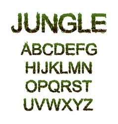 Jungle font vector