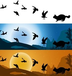 Cat hunter of birds vector image