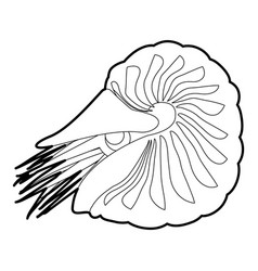 Clam icon outline vector
