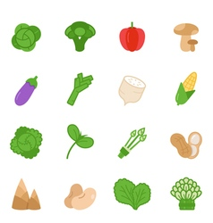 Color icon set - vegetable vector image vector image