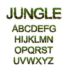 Jungle font vector